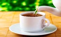 Gorse (Carqueja) tea